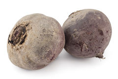 Raw red beetroots Stock Image