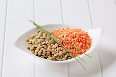 Raw red and brown lentils Royalty Free Stock Photos