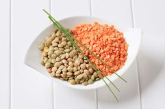 Raw red and brown lentils Royalty Free Stock Photography