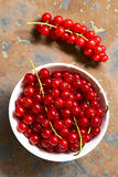 Raw Red Currants Stock Photos
