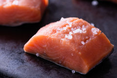 Raw red fish fillet. With sea salt on dark pan, close up, selective focus Royalty Free Stock Images