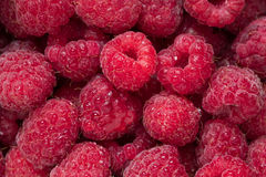 Raw red fruits of raspberries with water drops. Close-up raw red fruits of raspberries with water drops Royalty Free Stock Photography