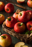 Raw Red Fuji Apples Stock Photography