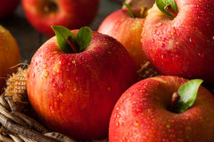 Raw Red Fuji Apples Stock Photo