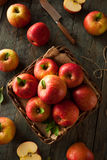 Raw Red Fuji Apples Stock Image