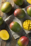Raw Red Green Organic Mango Fruit. Ready to Eat Royalty Free Stock Photography