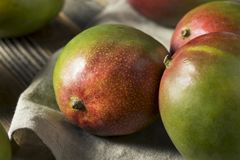 Raw Red Green Organic Mango Fruit. Ready to Eat Stock Photography