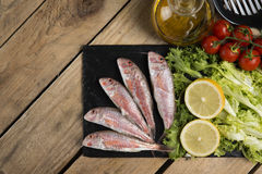 Raw red mullet served on curly salad on slate plate. On wooden table Stock Photography