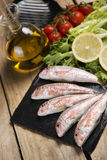 Raw red mullet served on curly salad on slate plate Royalty Free Stock Images