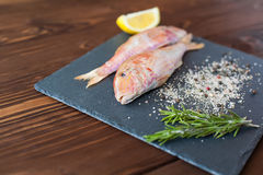 Raw red mullet on the slate tray Royalty Free Stock Image
