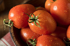 Raw Red Organic Roma Tomatoes Stock Photography