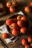 Raw Red Organic Roma Tomatoes Stock Images