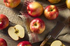 Raw Red Organic Sweet Tango Gala Apples Stock Photos