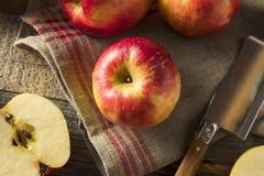 Raw Red Organic Sweet Tango Gala Apples Royalty Free Stock Photo