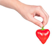 Raw red pepper. In the form of heart in the hand isolated over white background Royalty Free Stock Photo