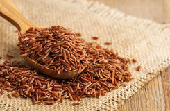 Raw red rice. On burlap napkin Stock Photos