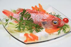 Raw Red Snapper on Glass Plate. A Red Snapper fish displayed on a glass plate with decorative vegetables Stock Image
