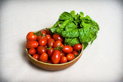 Raw red tomato and basil fresh on table Royalty Free Stock Images