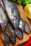 Raw redfish ruff fish on the kitchen table with vegetables and lemon Royalty Free Stock Photography