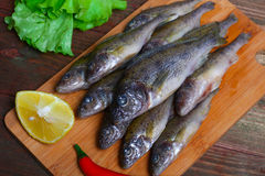 Raw redfish ruff fish on the kitchen table with vegetables and lemon Royalty Free Stock Images
