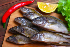 Raw redfish ruff fish on the kitchen table with vegetables and lemon Royalty Free Stock Photos