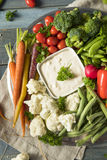 Raw Refreshing Vegetable Crudites Plate. With Ranch Dip Royalty Free Stock Photos