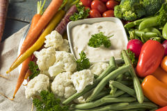Raw Refreshing Vegetable Crudites Plate. With Ranch Dip Royalty Free Stock Photography