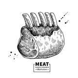 Raw ribs vector drawing. Beef, pork or lamb meat hand drawn sketch. Engraved raw food illustration. Vintage object. Butcher shop product. Great for label stock illustration