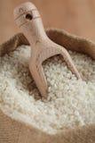 Raw rice Stock Image