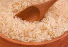 Raw rice Stock Photography