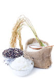 Raw rice, Selection Of black rice white rice and white steamed r Stock Photo