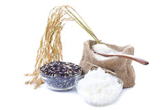 Raw rice, Selection Of black rice white rice and white steamed r Stock Photography