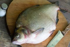 Raw river bream fish on the table in the kitchen royalty free stock photography