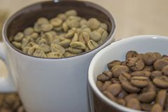 Raw and roasted coffee beans in a cup. A look at the cups with raw and roasted coffee in the grain Stock Photo