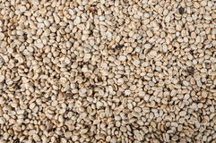 Raw  and roasted coffee beans,green unroasted coffee beans Royalty Free Stock Images