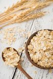 Raw rolled oats, oat flakes and oat spikes or spikelets Royalty Free Stock Images