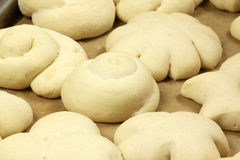 Raw rolls dough rising. Raw buns in various shapes. Dough rising on tinplate before baking royalty free stock image
