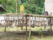 Raw rubber sheets drying in Myamar Royalty Free Stock Photo