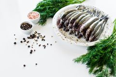 Raw Salakas on a plate, dill, pink salt, pepper and garlic. White background, top view, space for text. stock photos