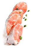 Raw salmon Royalty Free Stock Images