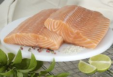 Raw Salmon. Big slabs of raw fresh salmon on white plate, with seasoning, herbs and lime nearby Royalty Free Stock Images