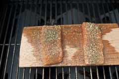 Raw Salmon Stock Photos