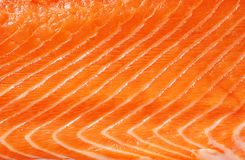Raw salmon background Royalty Free Stock Photo