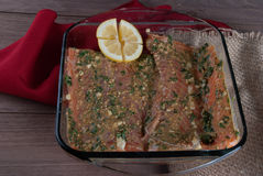 Raw Salmon Filet with Lemon and Greens,  Ready to Grill Royalty Free Stock Photos