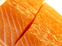 Raw Salmon fillet. Closeup of raw Salmon fillet with slice down center, isolated on white background Royalty Free Stock Image