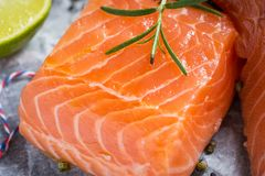 Raw Salmon Fillet with Aromatic Herbs and Spices. Fresh Raw Salmon Fillet with Aromatic Herbs and Spices on White Paper Stock Image