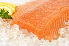 Raw salmon fillet. Detail of raw salmon fillet on ice Stock Image