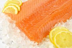 Raw salmon fillet. Detail of raw salmon fillet on ice Royalty Free Stock Photos