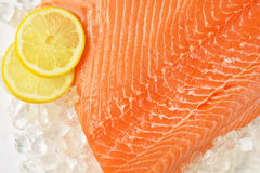 Raw salmon fillet. Detail of raw salmon fillet on ice Royalty Free Stock Photography