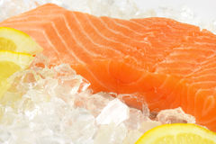 Raw salmon fillet. Detail of raw salmon fillet on ice Royalty Free Stock Photo